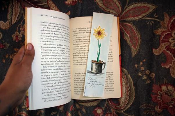 Foto de quando eu possuía o livro comigo.